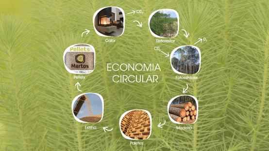 Martos e a economia circular